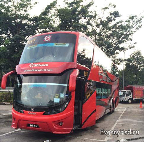 10-81-bus